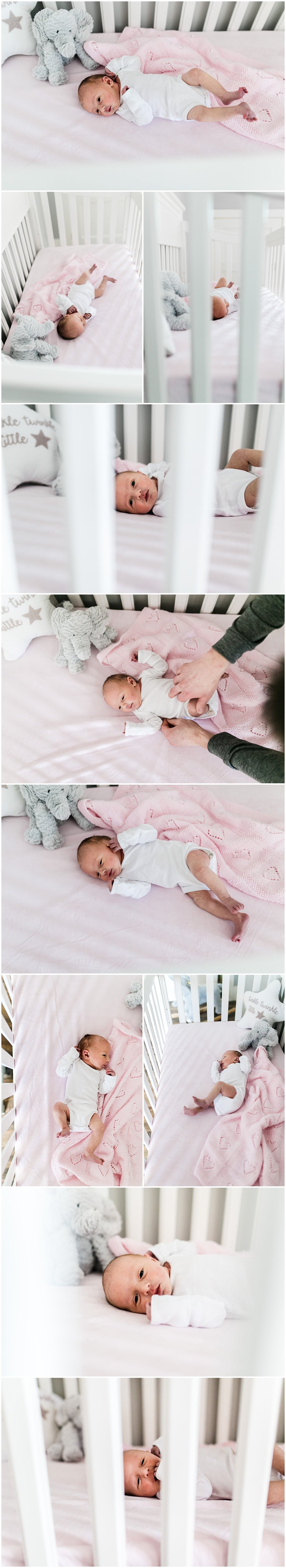 Fredericton in-home newborn session