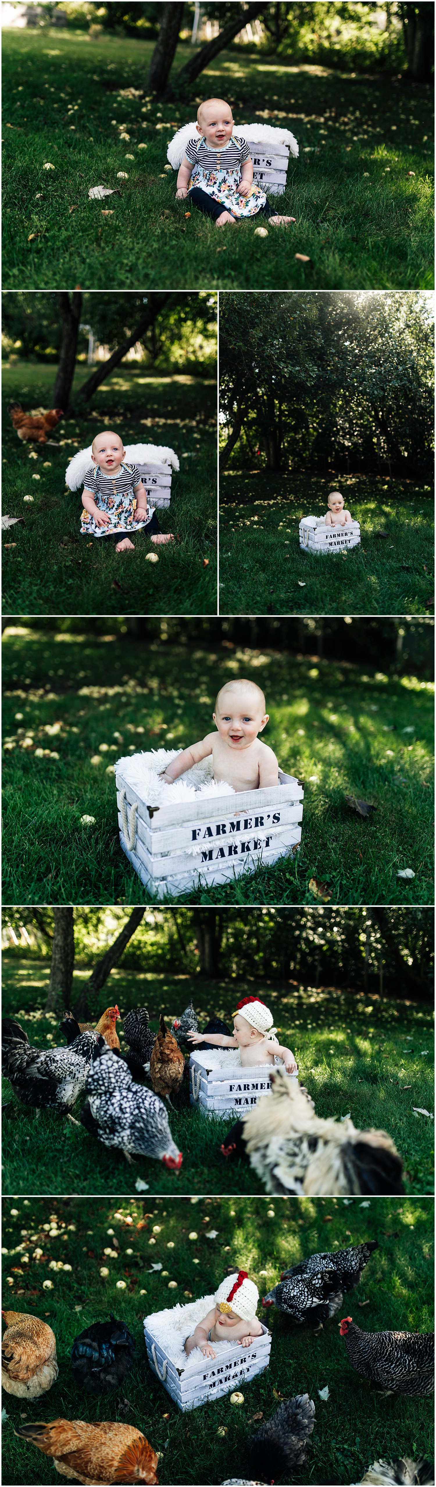 Six month old session