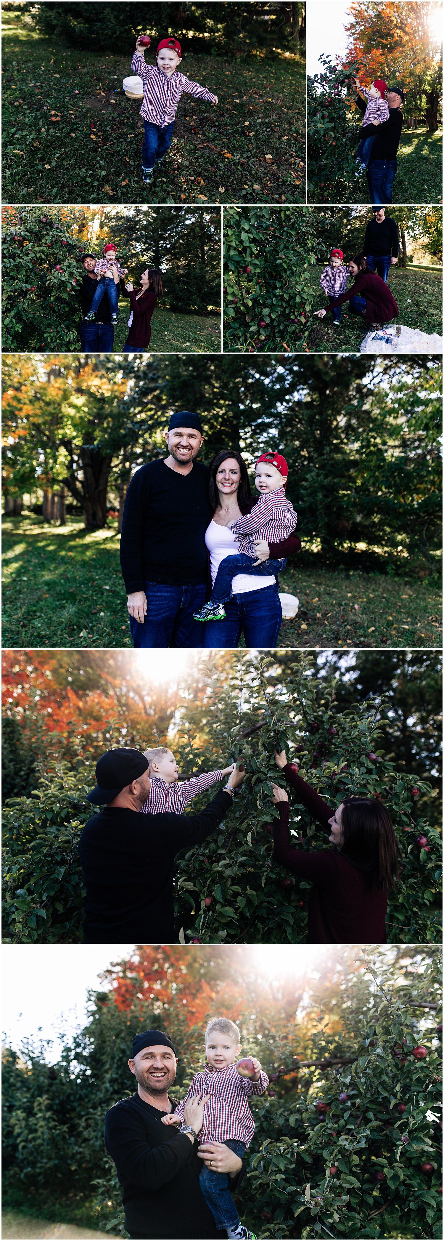 Family at an apple orchard